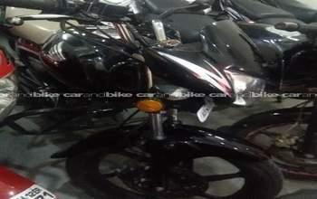 Honda Cb Shine Cb Rear View