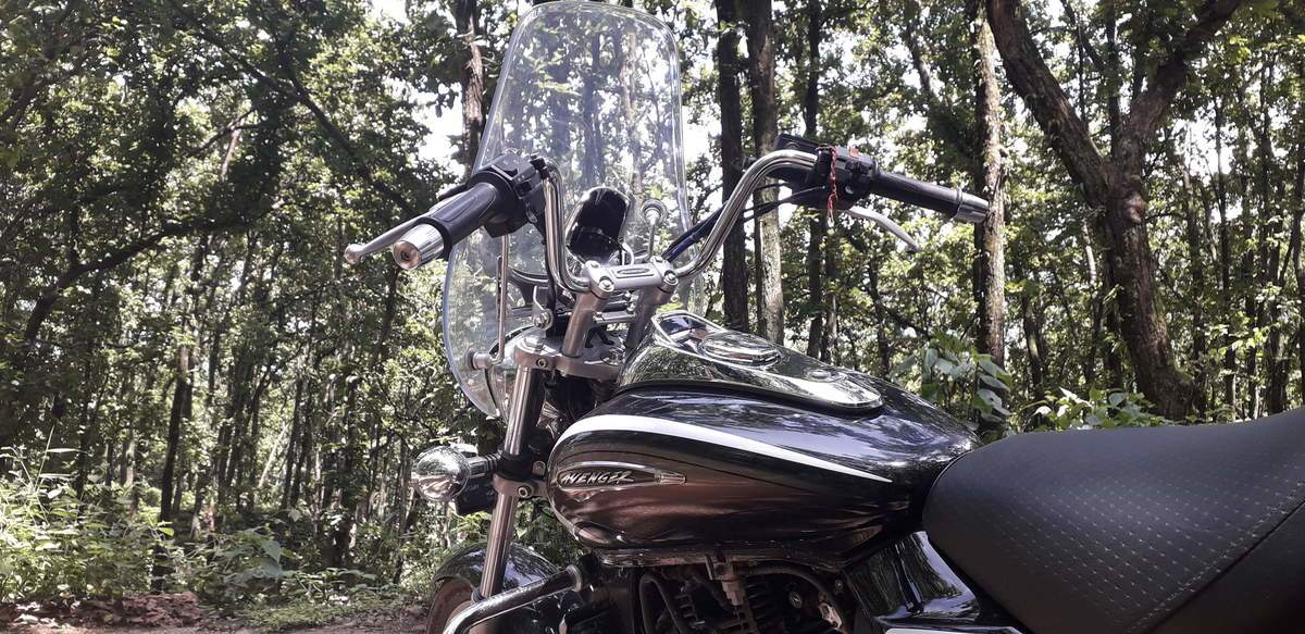Bajaj Avenger Cruise 220 Rear View
